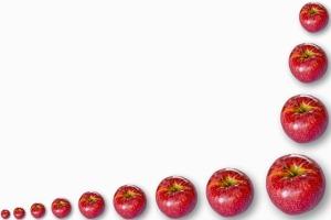 apples_angled
